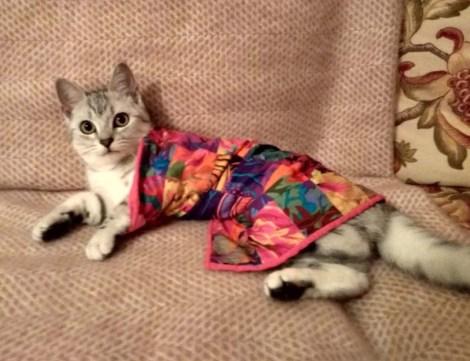 KittyQuilt_10